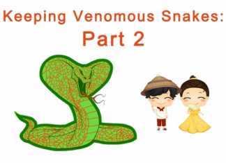 Keeping venomous snakes