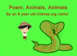 snake poem