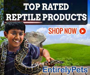 EntirelyPets-Snake-Page-Ad