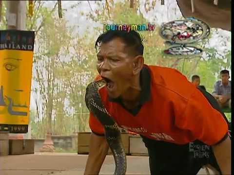 the cobra village